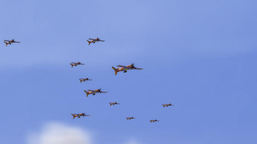 Dive bombers 0
